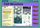 Video game: Cell Structure | Recurso educativo 39901