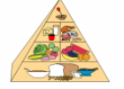 Food pyramid | Recurso educativo 55211