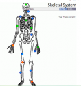 Skeletal system | Recurso educativo 58500