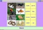 Our pets | Recurso educativo 3367